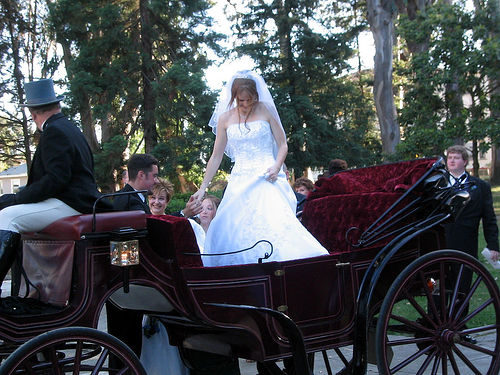 Horse Drawn Carriage for Wedding Transportation