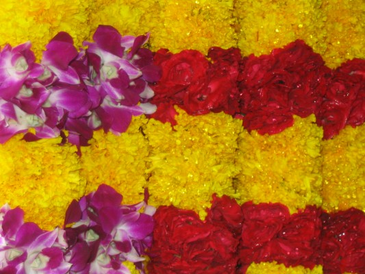 flowers-little-india